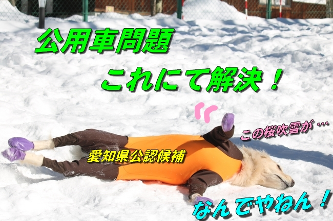 雪遊び2016 1045