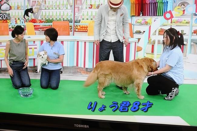 朝イチテレビ 015