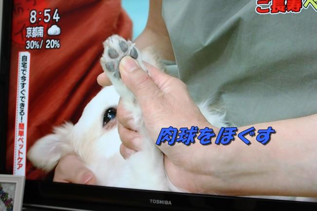 朝イチテレビ 020
