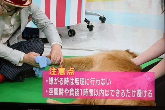 朝イチテレビ 023