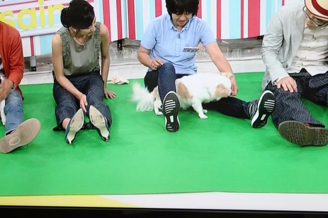朝イチテレビ 028