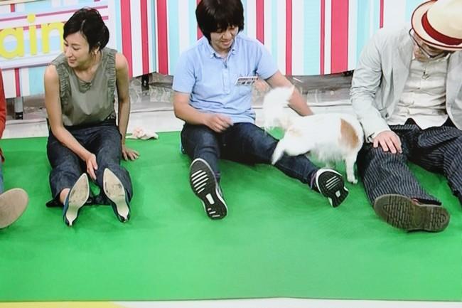 朝イチテレビ 029