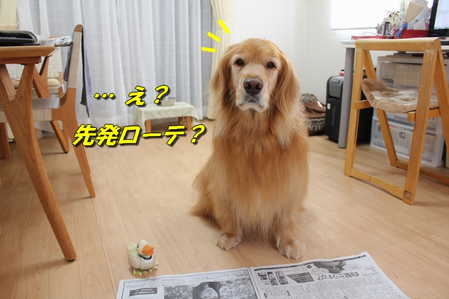 阪神新聞 008