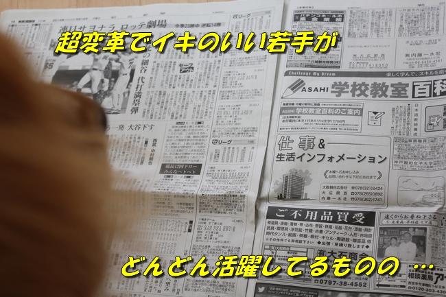 阪神新聞 015