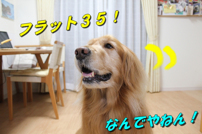 テーブル新聞 037