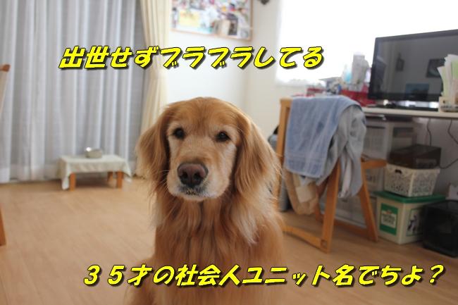 表情 009