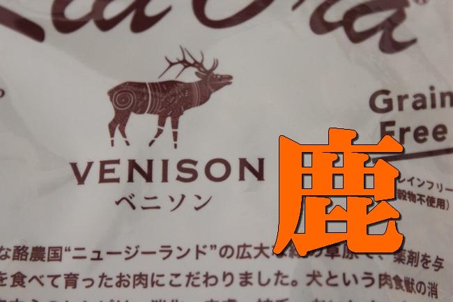 馬肉鹿肉2f 008