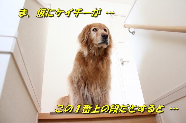 チェア階段 058