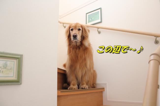 チェア階段 069
