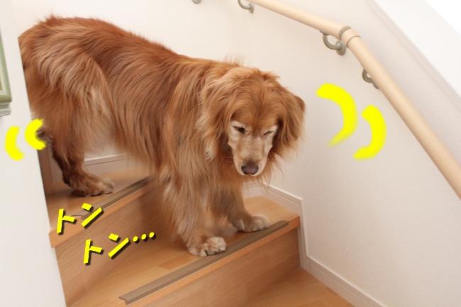 チェア階段 076
