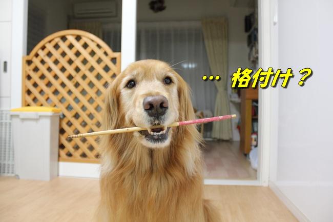 菜箸ヤバい妻 038