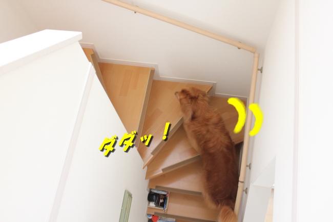 チェア階段 001