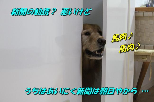 扉ASIMO会話 021