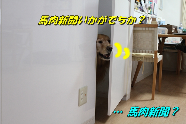 扉ASIMO会話 022