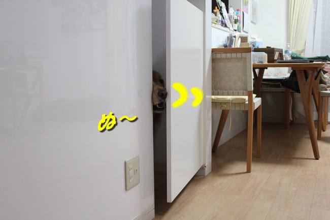 扉ASIMO会話 パターン2