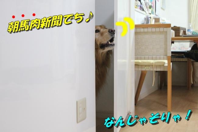 扉ASIMO会話 パターン2-8