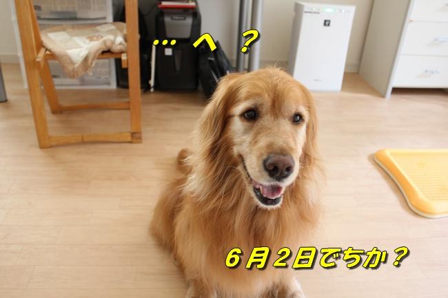 ASIMO雑談 004