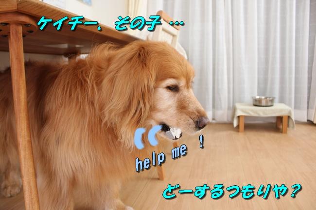 ASIMO雑談 030