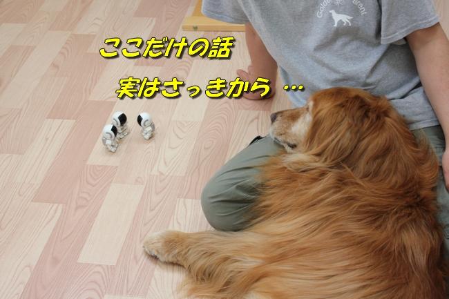 扉ASIMO会話 035
