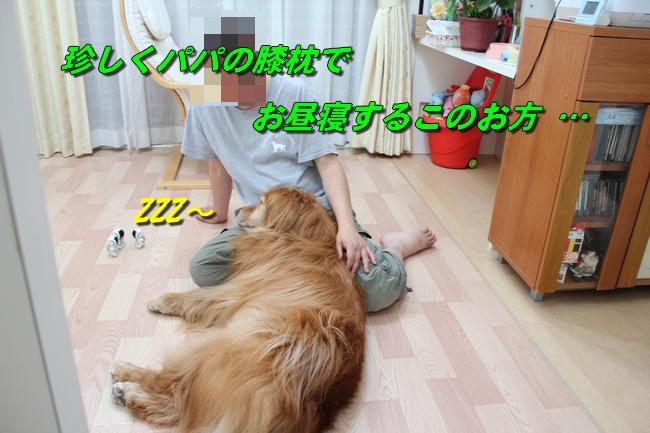 扉ASIMO会話 036