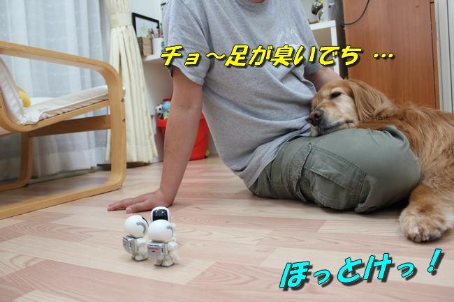 扉ASIMO会話 038