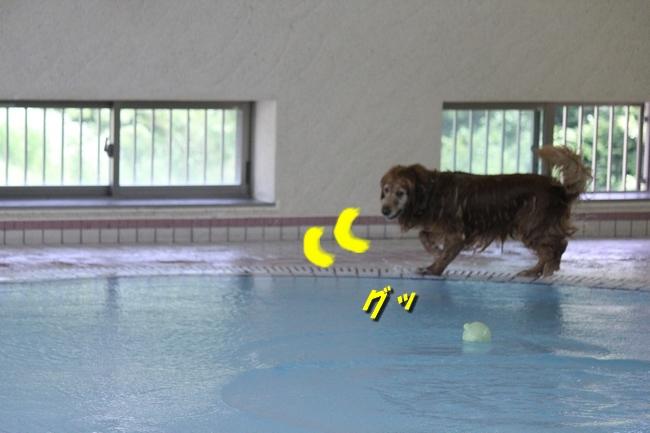 6月8日お水の日 137