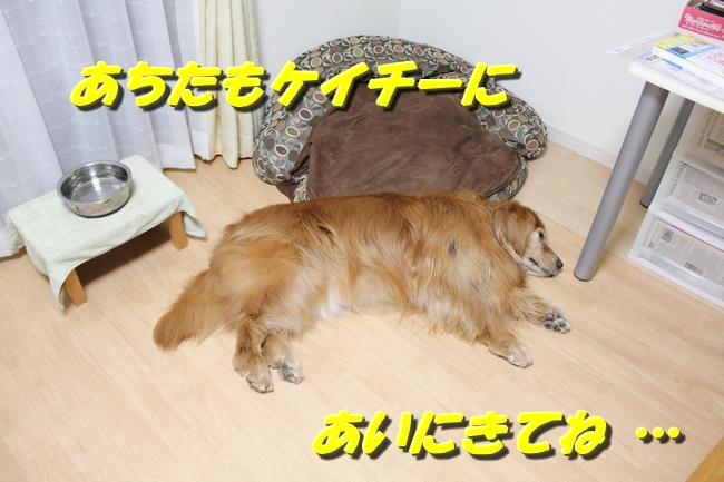 花子寝過ごし 012