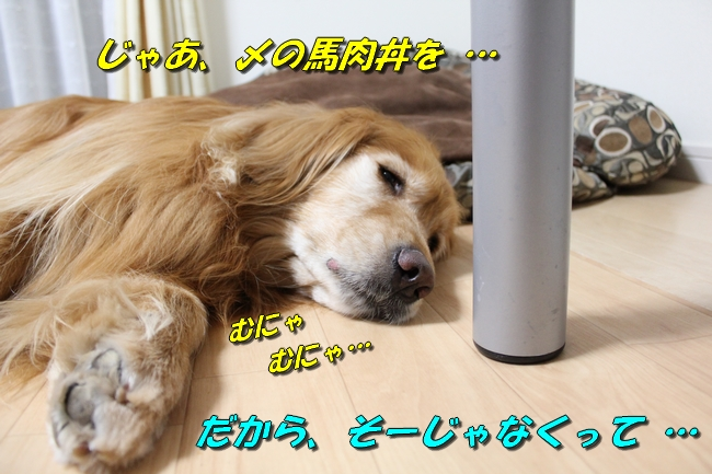 花子寝過ごし 018