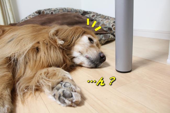花子寝過ごし 024