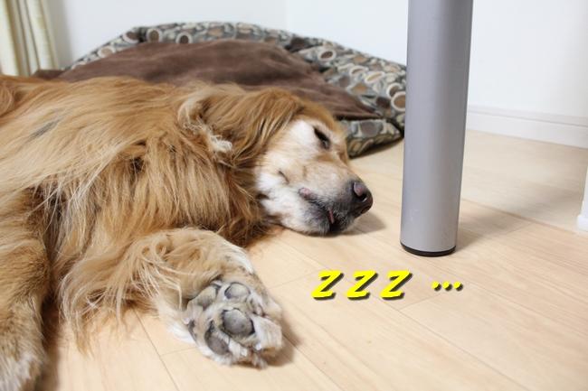 花子寝過ごし 027