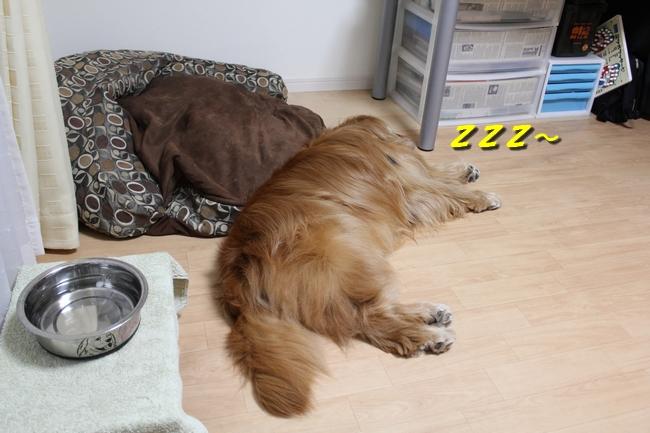 花子寝過ごし 036