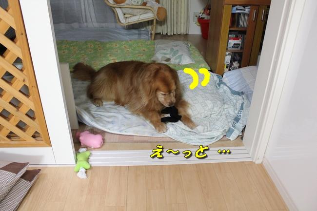 表情洗濯物 041