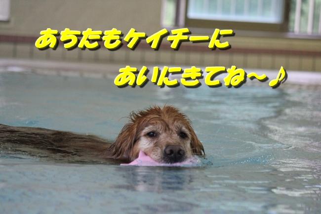 プールぶりイチロー 132