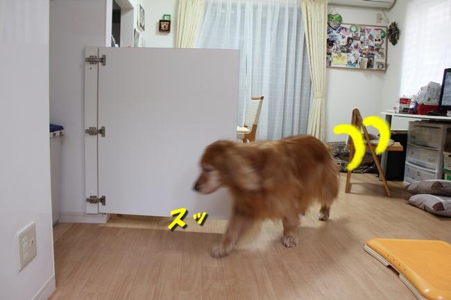 キッチン覗き 009