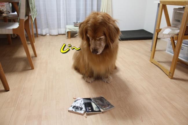 さくらんぼ文庫本 058