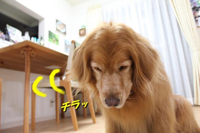 さくらんぼ文庫本 073