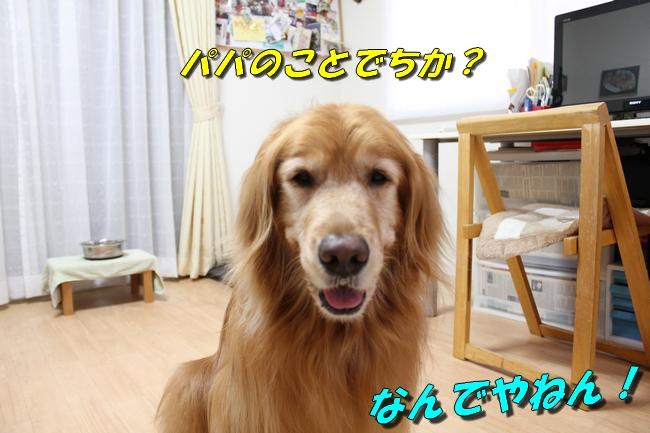 さくらんぼ文庫本 075