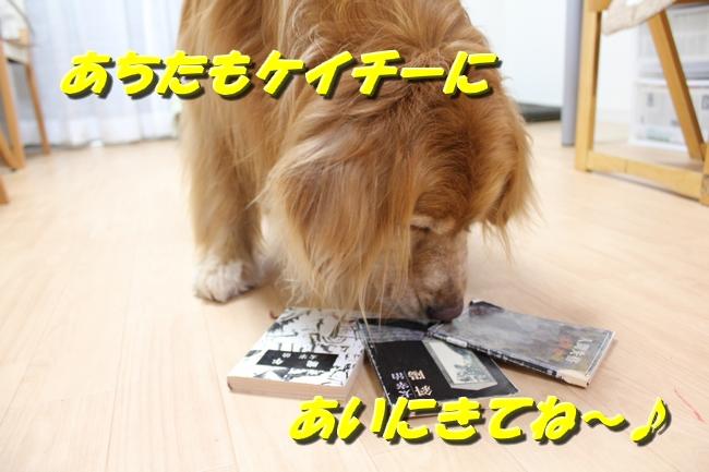さくらんぼ文庫本 085
