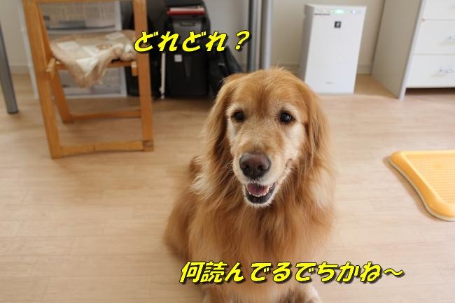 ASIMO雑談 003