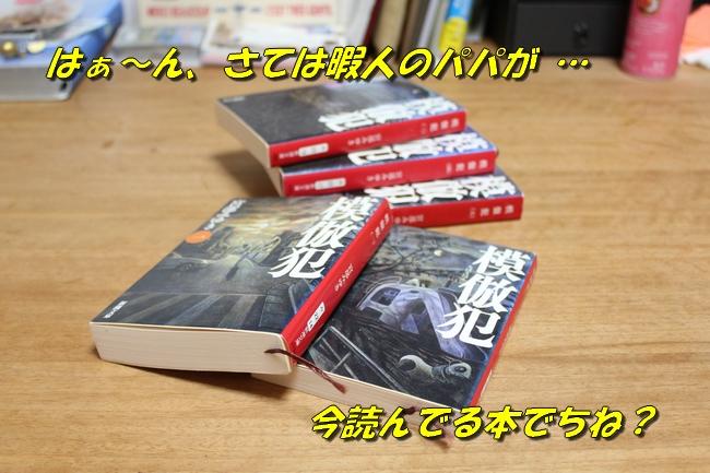 さくらんぼ文庫本 037