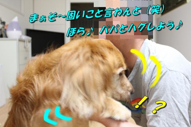 さくらんぼ文庫本 030