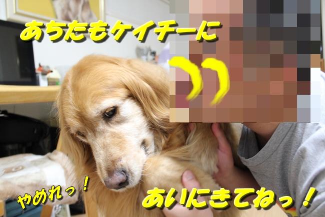 さくらんぼ文庫本 033