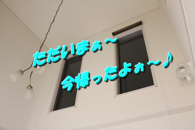 文庫本 043