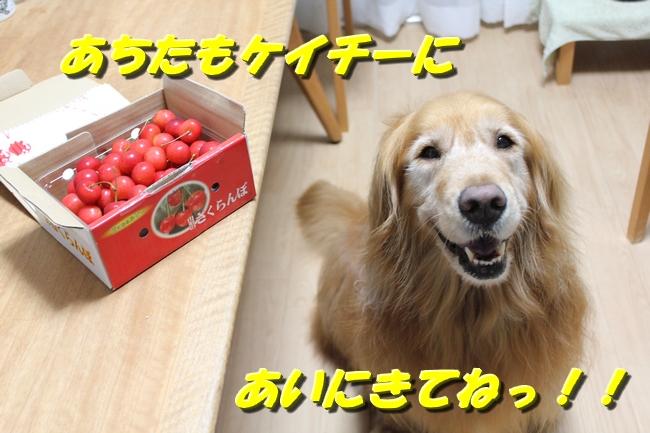 さくらんぼ文庫本 006