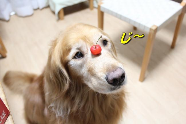 さくらんぼ文庫本 009