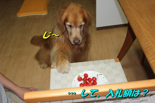 さくらんぼ文庫本 013