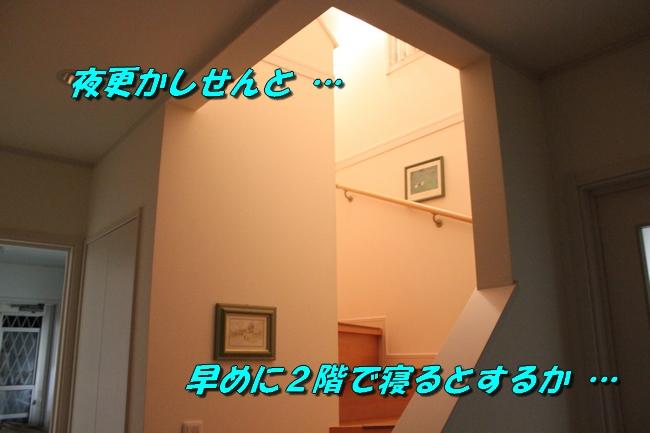 階段JAF 029