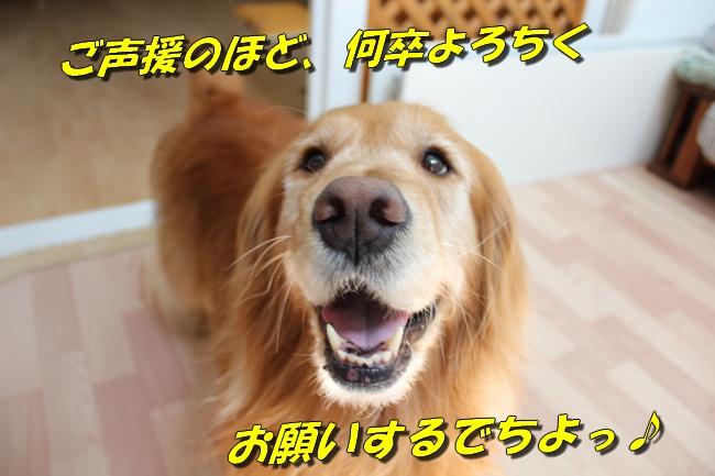 ASIMO雑談 049