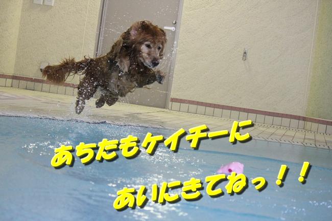 プールぶりイチロー 122