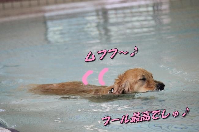 ティアナちゃんとプール2 070